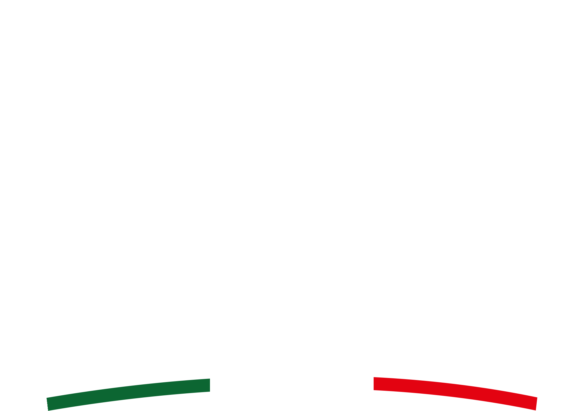Fisarmonicisti D'Italia